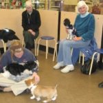 PetCo Dog Training Class in Action